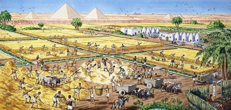 the rise of civilization in ancient egypt essay