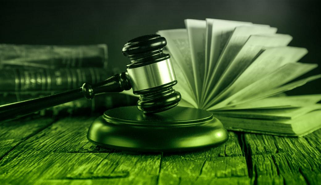 law_main 11