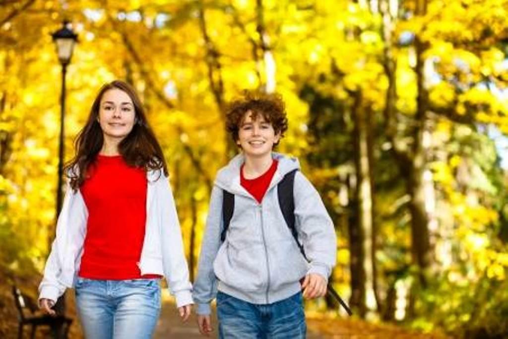 22673494-los-niños-y-niñas-caminando-en-el-parque-de-la-ciudad