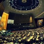 Международное право: основные организации и структуры