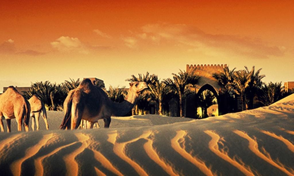 Арабский Халифат 8