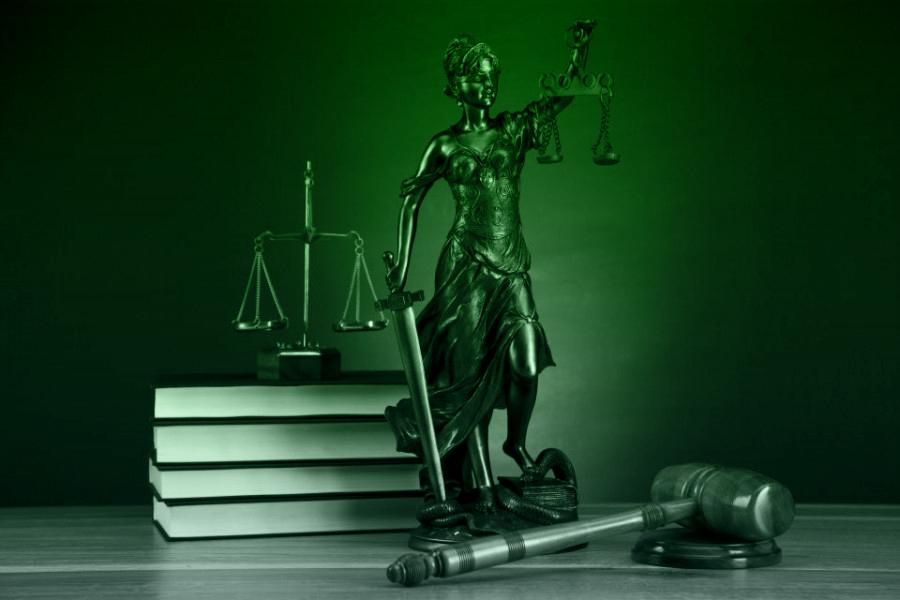 Гражданство Российской Федерации Субъекты гражданского права Понятие и виды юридической ответственности